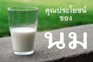 รายละเอียดวิตามินนมและประโยชน์ต่อสุขภาพ